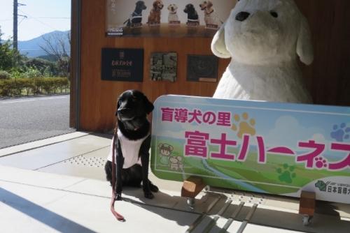 2016 長野 山梨 旅行