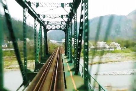 2016.04 樽見鉄道と桜 11