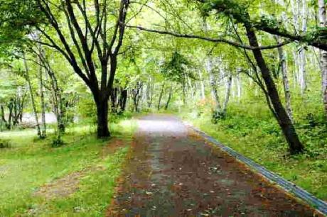 八ヶ岳自然文化園 (4)