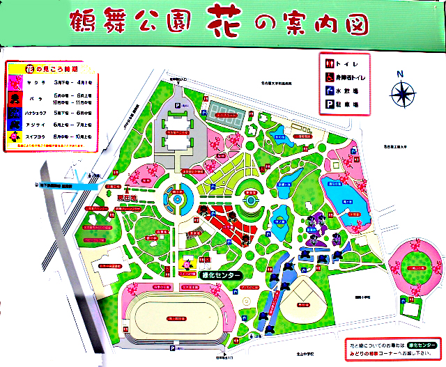鶴舞公園の花