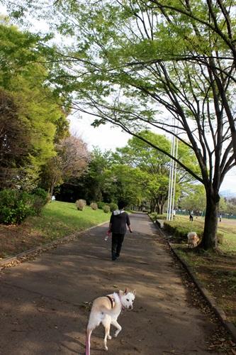 IMG_3961川里