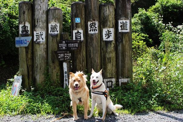 001鎌北湖
