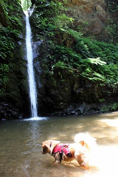 051宿谷の滝