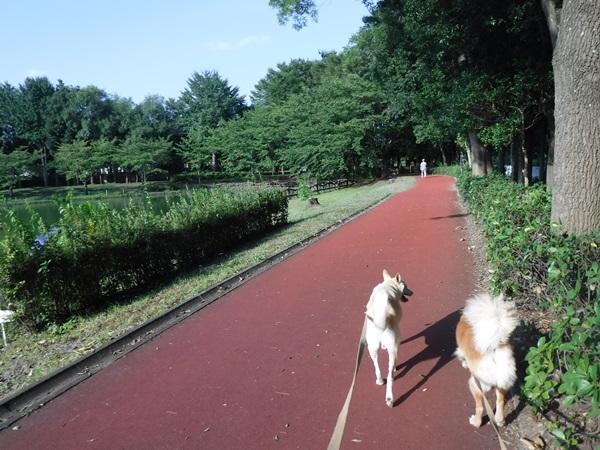 004総合公園