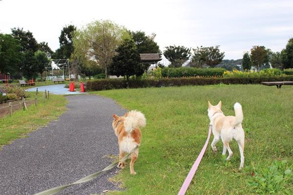 022公園
