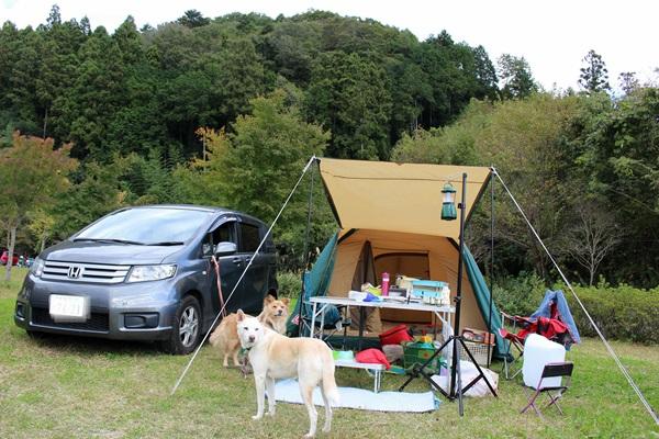002茨城キャンプ