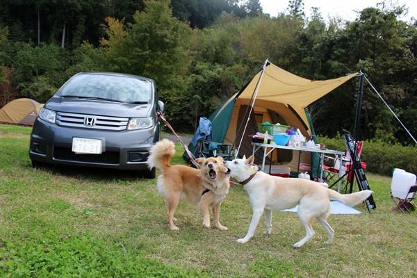 011茨城キャンプ
