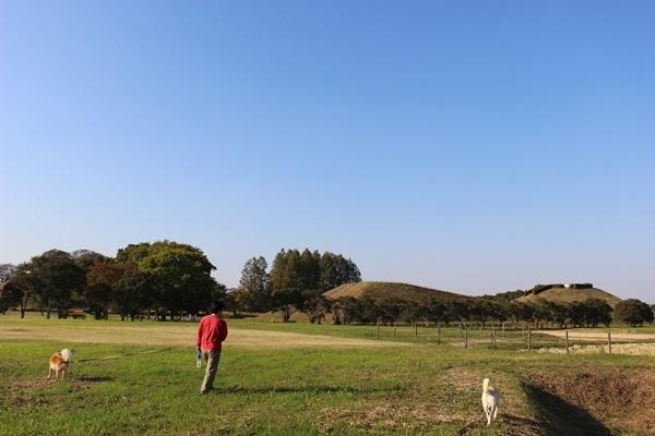 041古墳公園