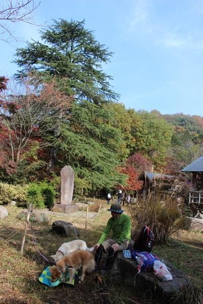 015嵐山