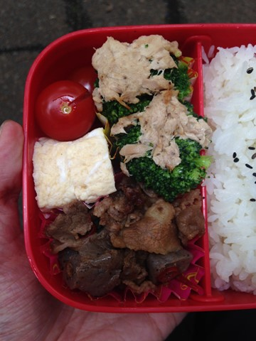 手作りお弁当 (5) (コピー)
