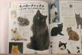 2017猫カタログ6