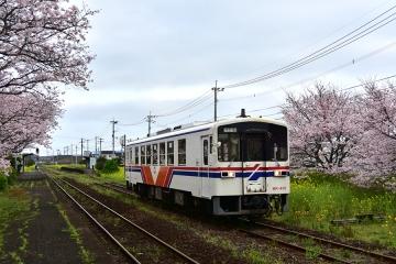 駅・桜情景2016(19)