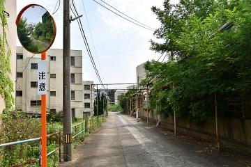池島旅行記(52)