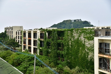 池島旅行記(53)