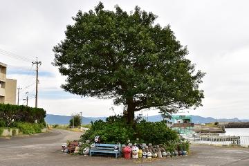 池島旅行記(85)