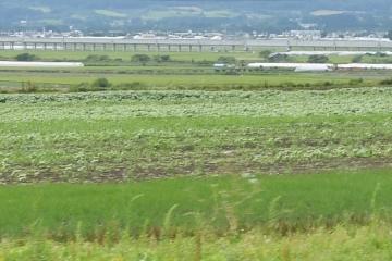 北海道201608(13)