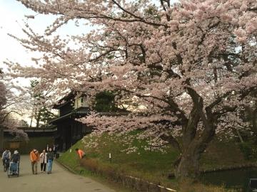 弘前公園4-21 (2)_600