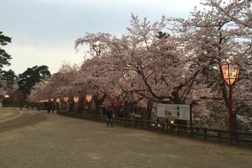 弘前公園4-21 (7)_600