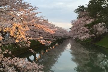 弘前公園4-21 (11)_600