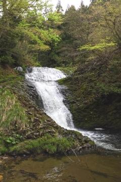七つ滝2016-5 _600 (1)
