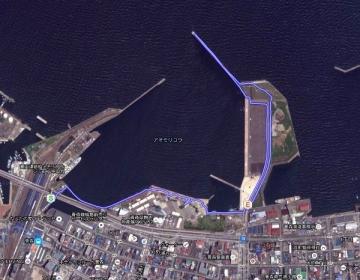 GPS木歩道_600