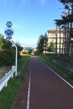 堤川歩 (8)_500