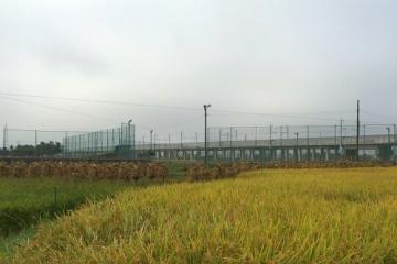 油川歩き9-25 (4)_500