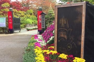 菊祭り (2)_500