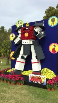 菊祭り (6)_500