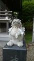 湯倉神社17