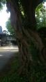 湯倉神社30