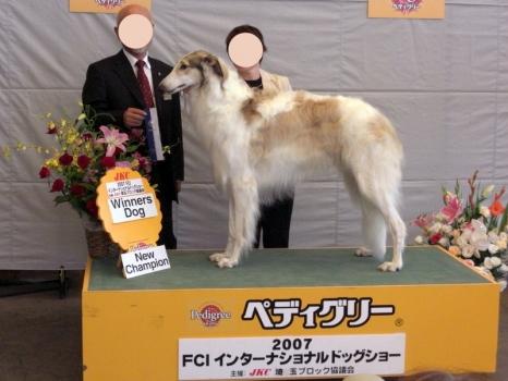 08-dog show 006