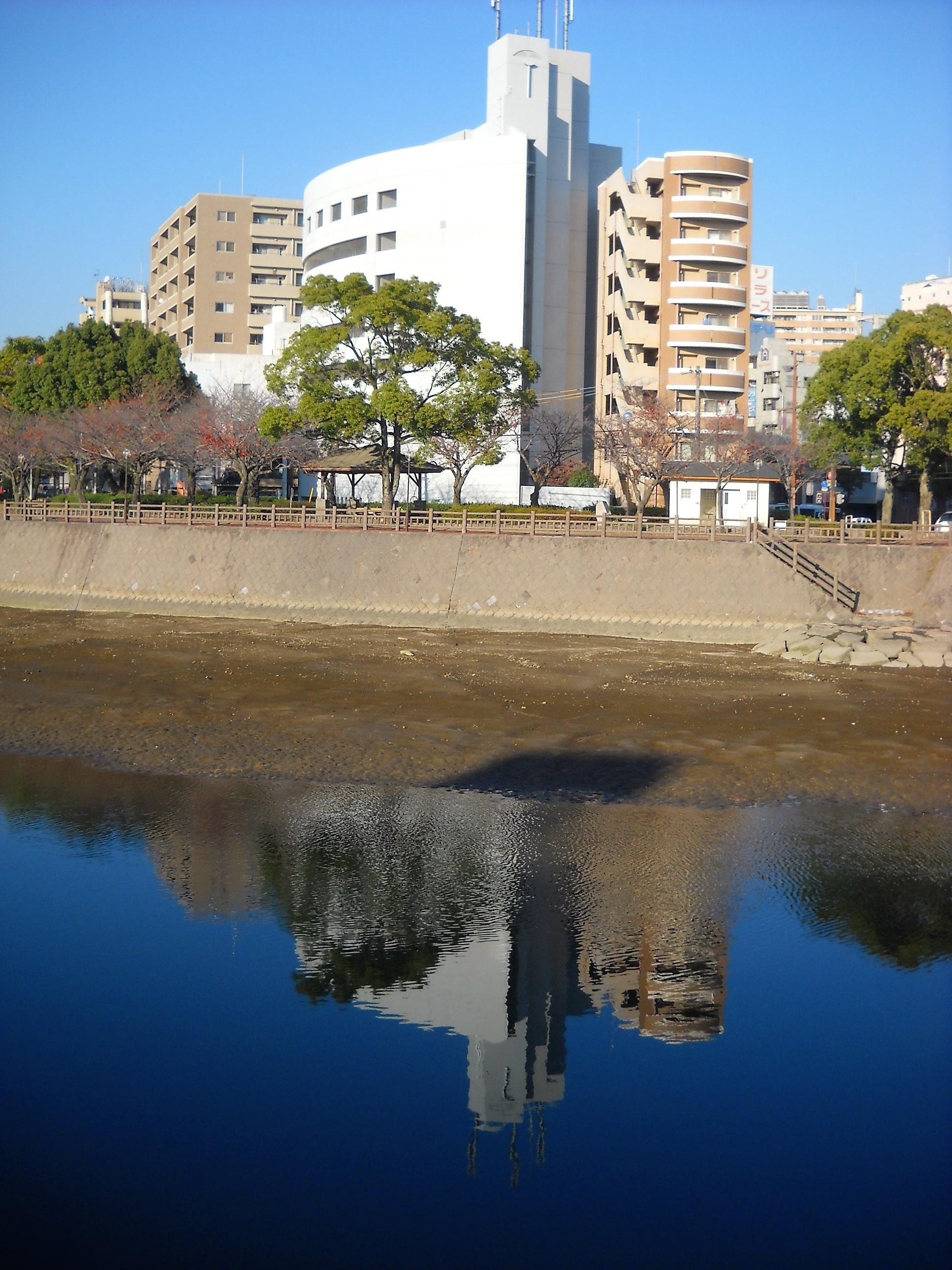水面の反映