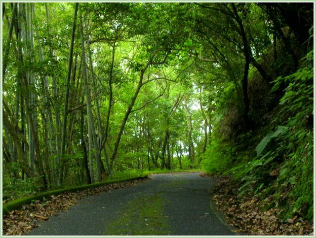 錫山自然遊歩道