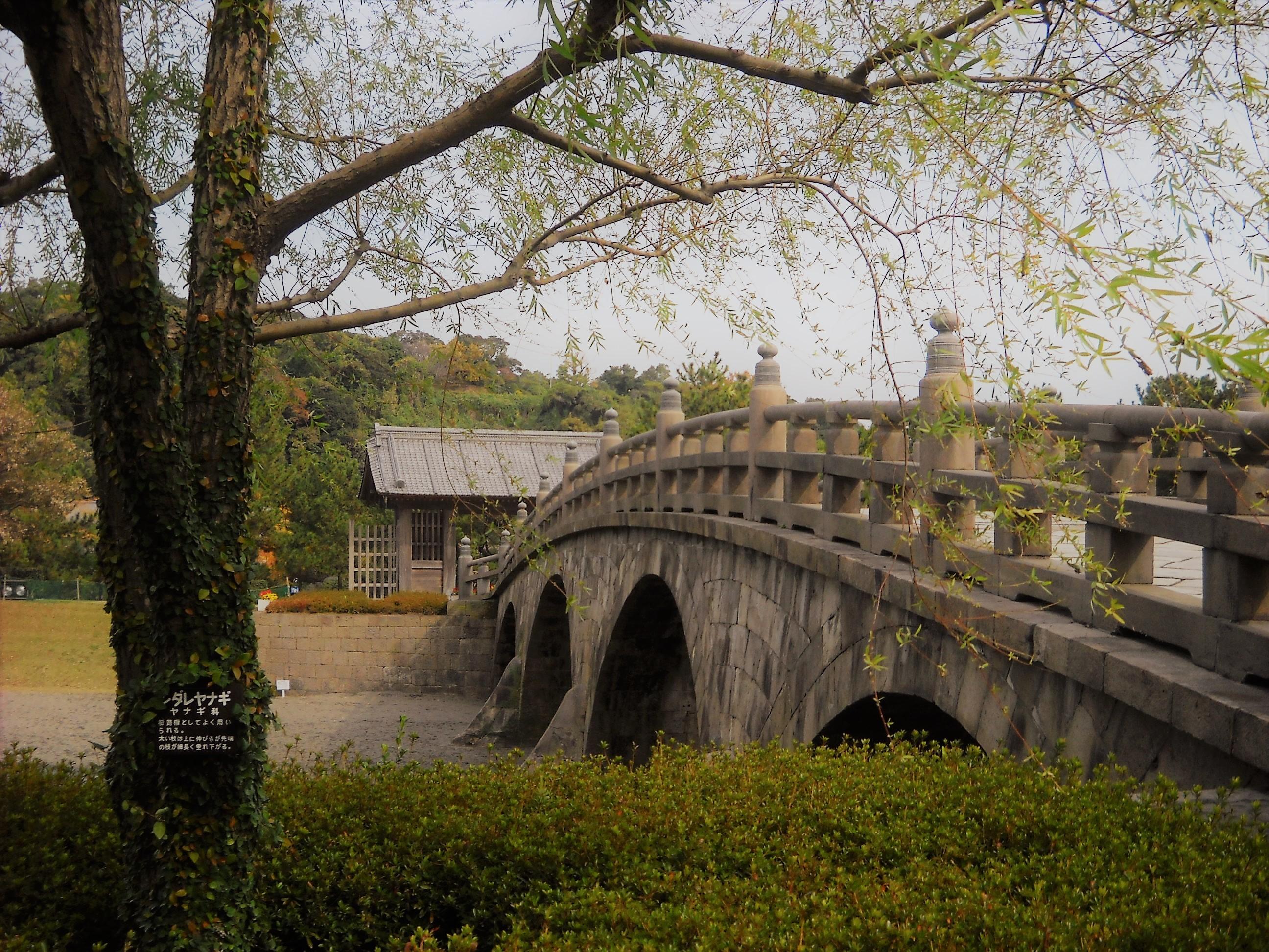 シダレヤナギと西田橋
