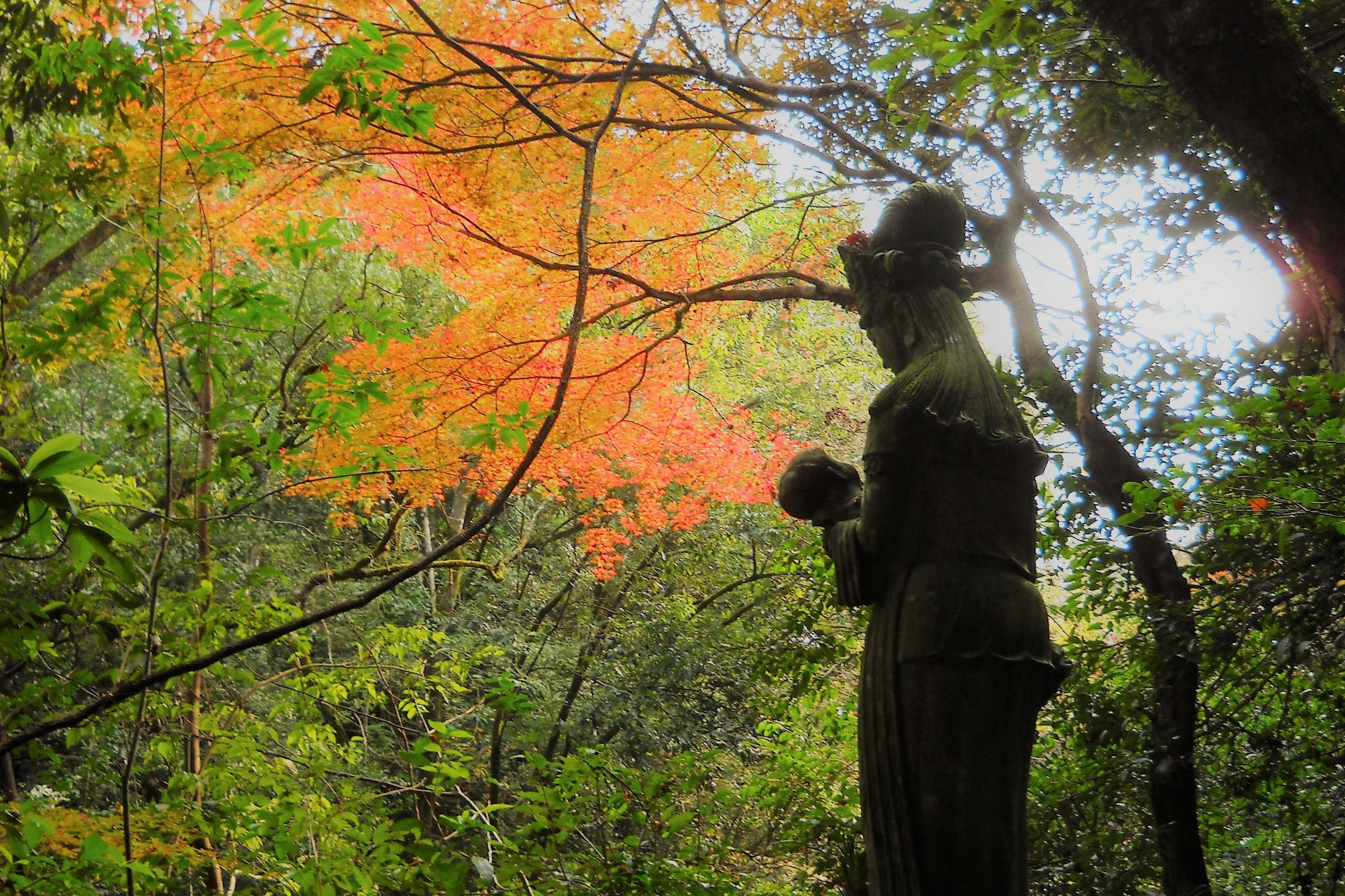 慈母観音像と紅葉