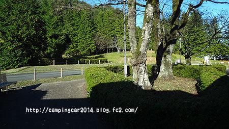 1611-kamikawachi6.jpg