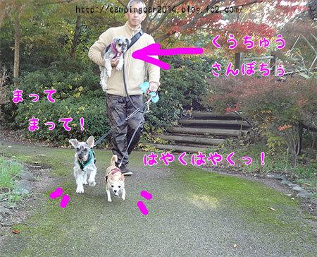 1611-toyosaka-girls2.jpg
