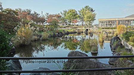 1611-toyosaka-sanpo.jpg