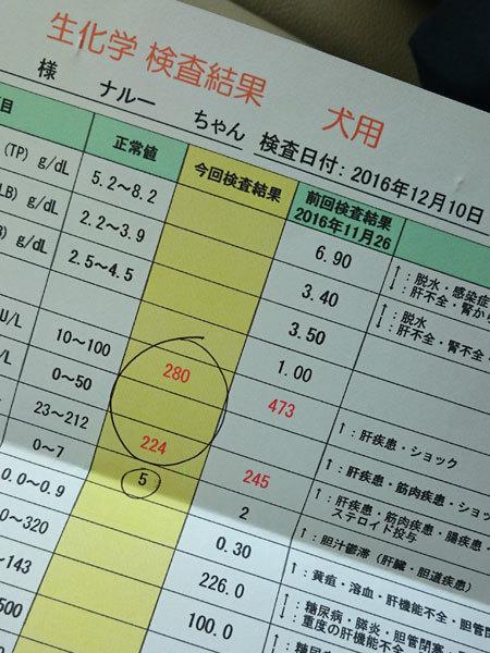 20161210ナルー検査結果2