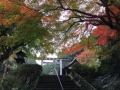 日向大神宮2