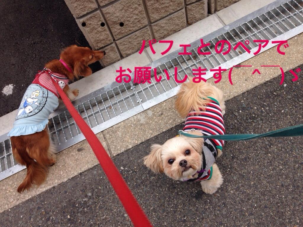 fc2blog_2016111022512112d.jpg