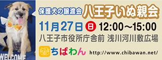 hachiohji17_320x120歌