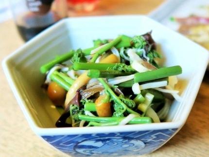 16-12-8 山菜