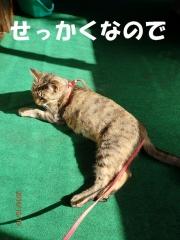 blog161020_5.jpg