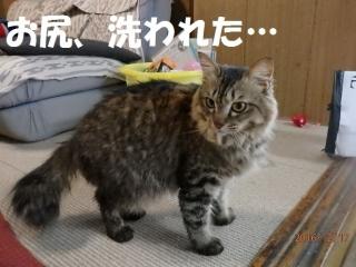 blog161217_5.jpg