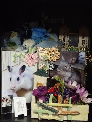 城東動物霊園2016.7.12