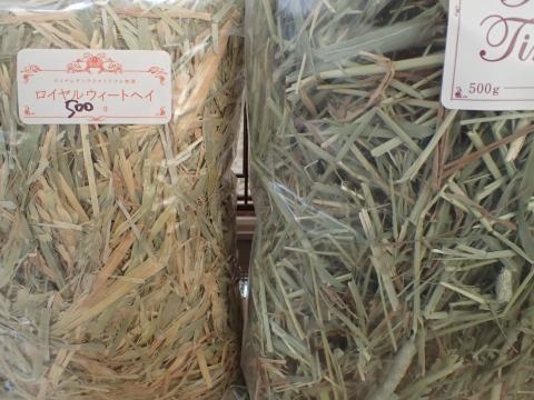 ロイチンオリジナル牧草