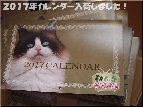 2016122401.jpg