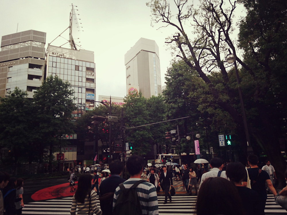 16-09-22-14-55-01-794_photo.jpg